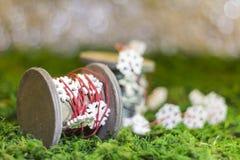 Χριστουγέννων κόκκινο δέντρο poinsettia χαιρετισμών λουλουδιών διακοσμήσεων αειθαλές Στοκ εικόνα με δικαίωμα ελεύθερης χρήσης