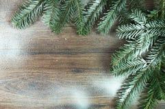 Χριστουγεννιάτικα δέντρα κλαδίσκων Στοκ Φωτογραφίες