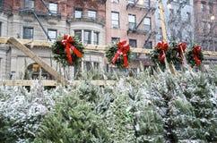 Χριστουγεννιάτικα δέντρα για την πώληση Στοκ Φωτογραφία