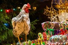 Χριστουγεννιάτικα δέντρα, παιχνίδια, ζωηρόχρωμη καραμέλα σε ένα ραβδί και ένας κόκκορας στοκ εικόνα