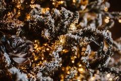 Χριστουγεννιάτικο δέντρο και διακόσμηση Στοκ Φωτογραφίες