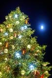 Χριστουγεννιάτικο δέντρο και φεγγάρι στο Στρασβούργο - την Αλσατία Στοκ Φωτογραφία