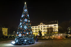 Χριστουγεννιάτικο δέντρο με τα φω'τα σπινθηρίσματος επάνω Στοκ Φωτογραφία