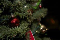 Χριστουγεννιάτικο δέντρο με την κάρτα και τις γυναικείες κάλτσες Santa Στοκ Φωτογραφία