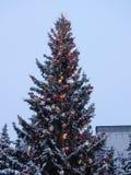 Χριστουγεννιάτικο δέντρο με την καμμένος γιρλάντα και ένα αστέρι Στοκ Εικόνα