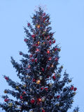 Χριστουγεννιάτικο δέντρο με την καμμένος γιρλάντα και το αστέρι Στοκ φωτογραφίες με δικαίωμα ελεύθερης χρήσης