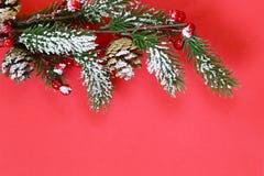 Χριστουγεννιάτικο δέντρο με τις διακοσμήσεις Χριστουγέννων Στοκ Εικόνα
