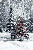 Χριστουγεννιάτικο δέντρο με τις κόκκινες σφαίρες γυαλιού Στοκ εικόνα με δικαίωμα ελεύθερης χρήσης