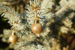 Χριστουγεννιάτικο δέντρο με τις μικρές σφαίρες στοκ φωτογραφία με δικαίωμα ελεύθερης χρήσης