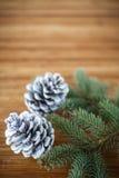 Χριστουγεννιάτικο δέντρο με τους κώνους Στοκ φωτογραφίες με δικαίωμα ελεύθερης χρήσης