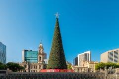 Χριστουγεννιάτικο δέντρο στην πλατεία Βικτώριας στην Αδελαΐδα Στοκ φωτογραφία με δικαίωμα ελεύθερης χρήσης