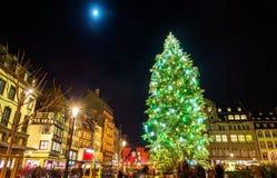 Χριστουγεννιάτικο δέντρο στη διάσημη αγορά στο Στρασβούργο Στοκ εικόνα με δικαίωμα ελεύθερης χρήσης