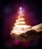 Χριστουγεννιάτικο δέντρο στο χέρι σας - κόκκινο Στοκ Εικόνα