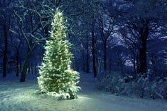 Χριστουγεννιάτικο δέντρο στο χιόνι Στοκ Φωτογραφίες