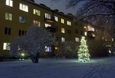 Χριστουγεννιάτικο δέντρο στο χιόνι Στοκ εικόνες με δικαίωμα ελεύθερης χρήσης