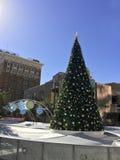 Χριστουγεννιάτικο δέντρο στο Phoenix κεντρικός, AZ Στοκ Φωτογραφία