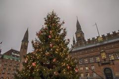 Χριστουγεννιάτικο δέντρο της Κοπεγχάγης Στοκ Εικόνες