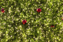 Χριστουγεννιάτικο δέντρο τη νύχτα Στοκ Εικόνα