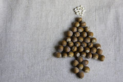 Χριστουγεννιάτικο δέντρο φιαγμένο από φουντούκια Στοκ εικόνες με δικαίωμα ελεύθερης χρήσης
