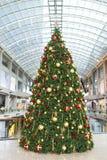 Χριστουγεννιάτικο δέντρο Στοκ Εικόνες