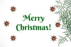 Χριστουγεννιάτικο δέντρο και γλυκάνισο στο άσπρο υπόβαθρο απεικόνιση αποθεμάτων