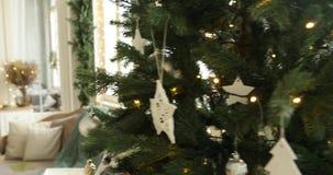 Χριστουγεννιάτικο δέντρο και καναπές κοντά στα παράθυρα απόθεμα βίντεο