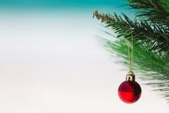 Χριστουγεννιάτικο δέντρο και κόκκινο μπιχλιμπίδι στενό σε επάνω παραλιών στοκ εικόνα