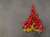 Χριστουγεννιάτικο δέντρο με τα μούρα σε γκρίζο Στοκ Φωτογραφία