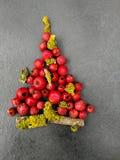 Χριστουγεννιάτικο δέντρο με τα μούρα Στοκ Εικόνα