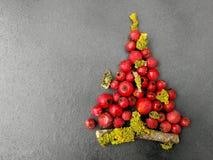 Χριστουγεννιάτικο δέντρο με τα μούρα Στοκ εικόνα με δικαίωμα ελεύθερης χρήσης