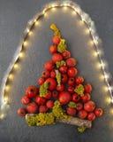 Χριστουγεννιάτικο δέντρο με τα μούρα Στοκ Εικόνες