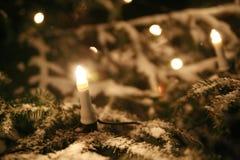 Χριστουγεννιάτικο δέντρο με τα φω'τα στοκ φωτογραφία