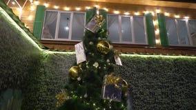 Χριστουγεννιάτικο δέντρο με τα φω'τα υπαίθρια απόθεμα βίντεο