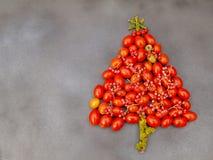Χριστουγεννιάτικο δέντρο με τις ντομάτες κερασιών Στοκ Εικόνες