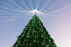 Χριστουγεννιάτικο δέντρο που εγκαθίσταται στην πλατεία Vilnius στην εμφάνιση Στοκ Φωτογραφίες