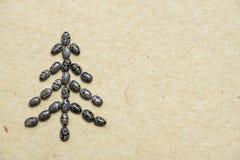 Χριστουγεννιάτικο δέντρο σπόρου Chia Στοκ εικόνες με δικαίωμα ελεύθερης χρήσης
