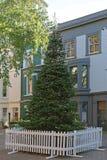 Χριστουγεννιάτικο δέντρο στην οδό στοκ εικόνες