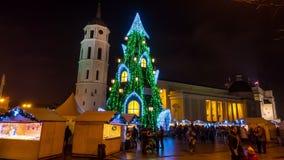 Χριστουγεννιάτικο δέντρο στο τετράγωνο καθεδρικών ναών σε Vilnius, Λιθουανία, 4K χρόνος-σφάλμα απόθεμα βίντεο