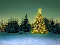 Χριστουγεννιάτικο δέντρο στο χειμερινό δάσος Στοκ εικόνα με δικαίωμα ελεύθερης χρήσης