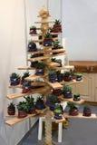 Χριστουγεννιάτικο δέντρο φιαγμένο από διακοσμητικά λουλούδια Στοκ εικόνες με δικαίωμα ελεύθερης χρήσης
