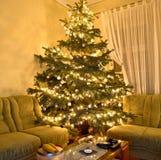 Χριστουγεννιάτικο δέντρο Στοκ εικόνες με δικαίωμα ελεύθερης χρήσης