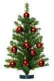 χριστουγεννιάτικο δέντρ&o Στοκ Φωτογραφία