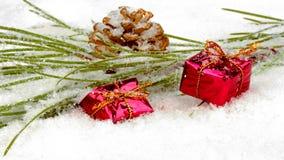 Χριστουγεννιάτικο δώρο με το μήλο έλατου στο χιόνι φιλμ μικρού μήκους