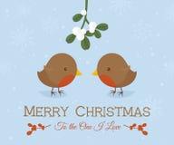 Χριστούγεννα αγάπης της Robin στοκ εικόνες