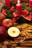 Χριστούγεννα ανασκοπήσεων Στοκ Εικόνα