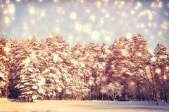 Χριστούγεννα ανασκόπησης ζωηρόχρωμα Στοκ Εικόνες
