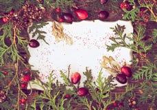 Χριστούγεννα ανασκόπηση&sigm στοκ φωτογραφίες με δικαίωμα ελεύθερης χρήσης
