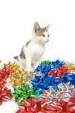 Χριστούγεννα γατών τόξων στοκ εικόνες