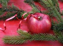 Χριστούγεννα η ώριμη κόκκινη Apple στον πίνακα μεταξύ του πράσινου έλατου branc Στοκ εικόνες με δικαίωμα ελεύθερης χρήσης
