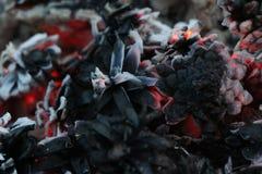 Χριστούγεννα και νέο έτος imege κάρτα Δασικοί κώνοι του FIR στην πυρκαγιά Στοκ Εικόνα